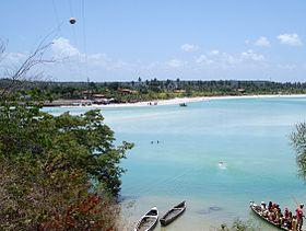 Roteiro da Ilha de Itamaracá permite que turista veja de perto o peixe-boi